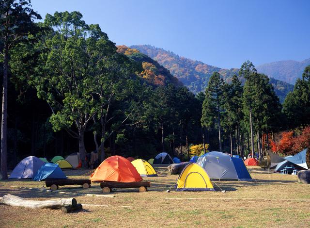 キャンプに行こう!!