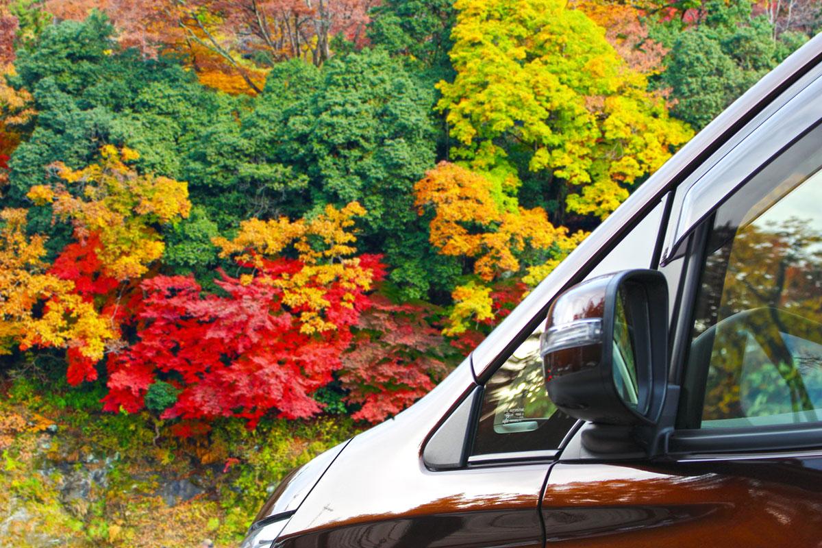 紅葉ドライブ